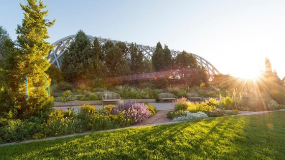 Photo from the Facebook page of Denver Botanic Gardens